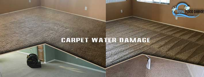 Get Wet Carpet Cleaned, Dried & Maintained in the Best Way with Professional Services