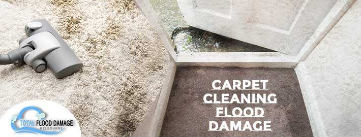 carpet cleaning flood damage