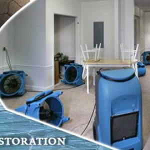 Flood Restoration