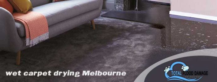 Wet Carpet Drying in Melbourne