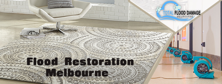 Flood Restoration Melbourne