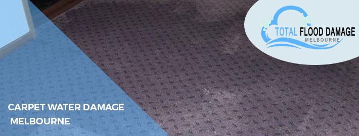 When & How To Hire A Professional Carpet Water Damage Company?