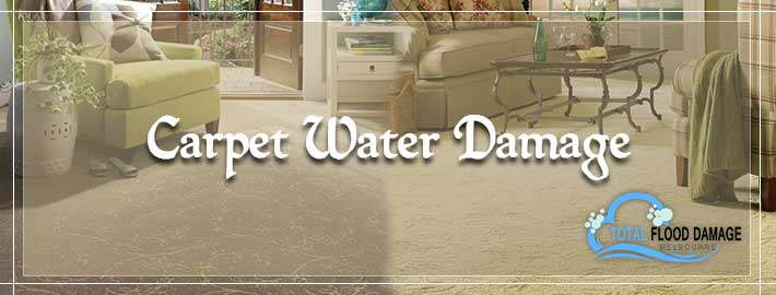 Carpet Water Damage Melbourne