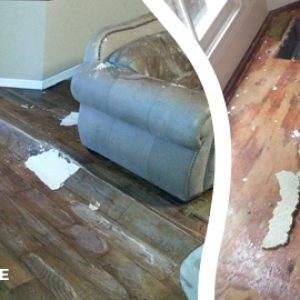 Water Damage Service Melbourne