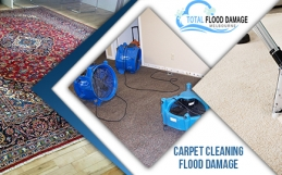 Carpet Water Damage Specialist: Good to Give the Restoration