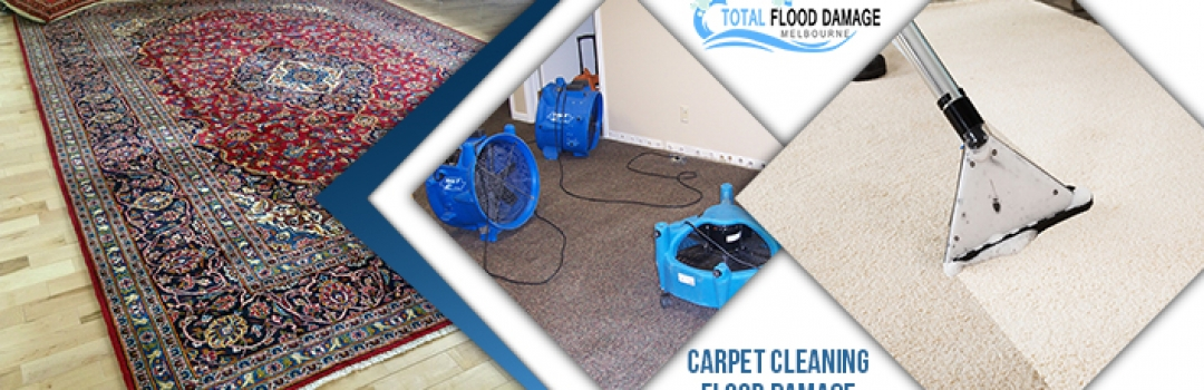 Clean and Dry Your Wet/Water Damaged Carpets with Professional Carpet Cleaning Services