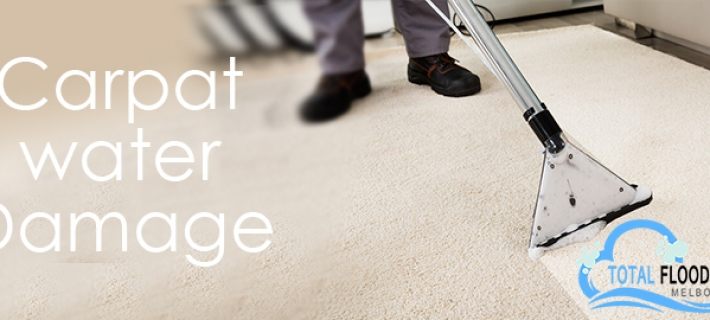 Why Should You Hire Carpet Water Damage Restoration Service?