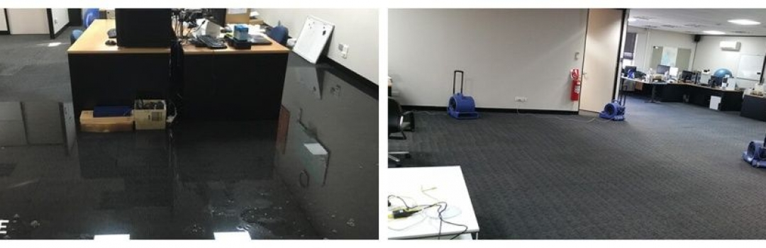 Why Carpet Drying is Essential after Water Damage in the House?