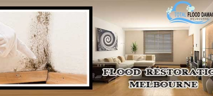 Important Flood Restoration Tips To Make Your Home Safe