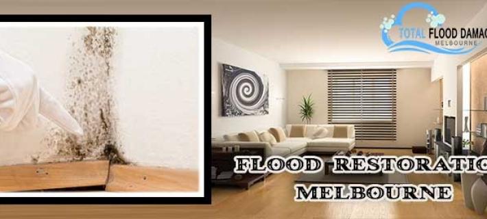 Important Flood Restoration Tips To Make Your Home Safe