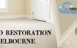 Flood Restoration Company- Restore your Business and House