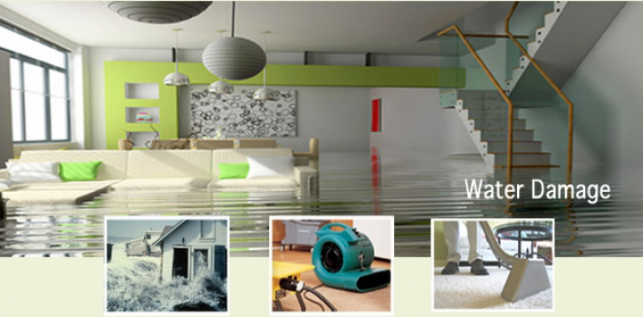 Why Professional Services should be considered for Carpet Water Damage?