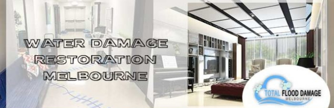 Why Should You Hire Professional Water Damage Restoration Company?
