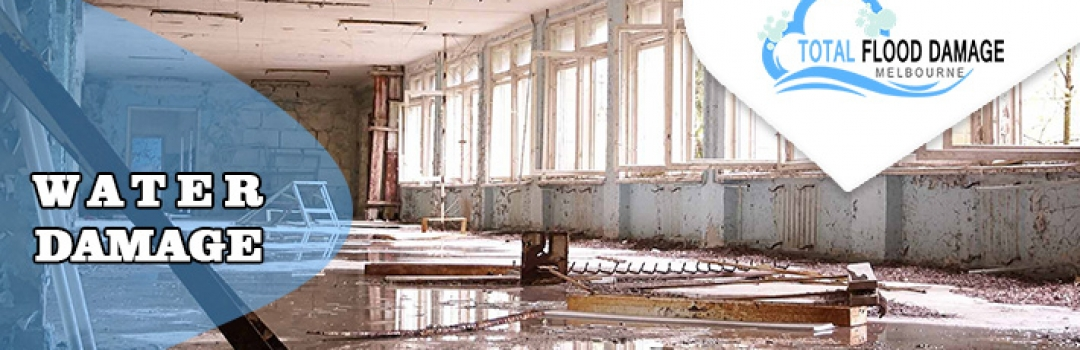 Few Things You Should Always Include About Water Damage Issue