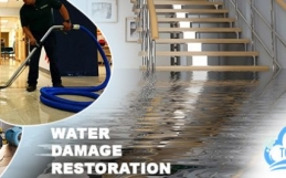 Why Is It Important To Seek Water Damage Restoration On Time?