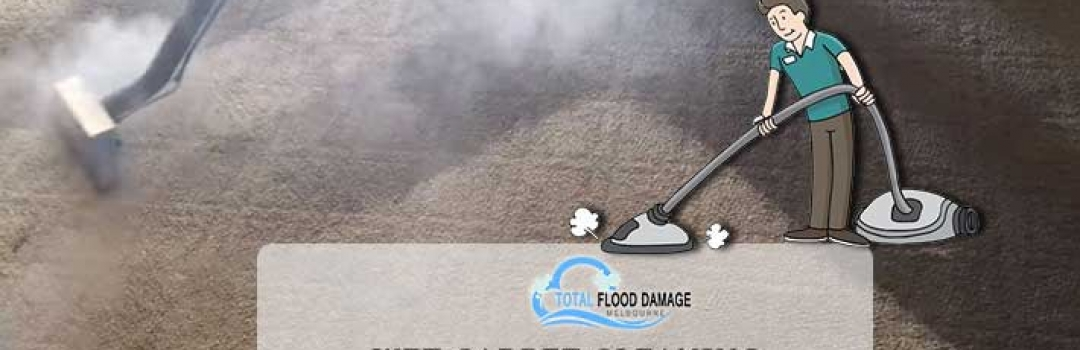 Approaching Our Wet Carpet Cleaning Services
