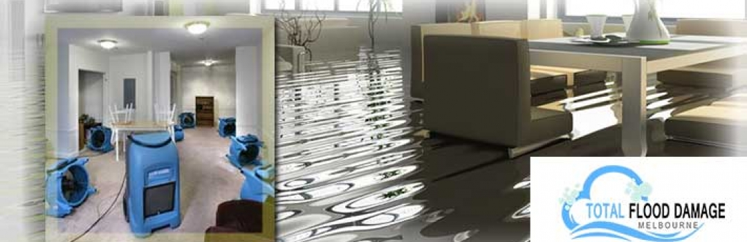 carpet cleaning flood damage