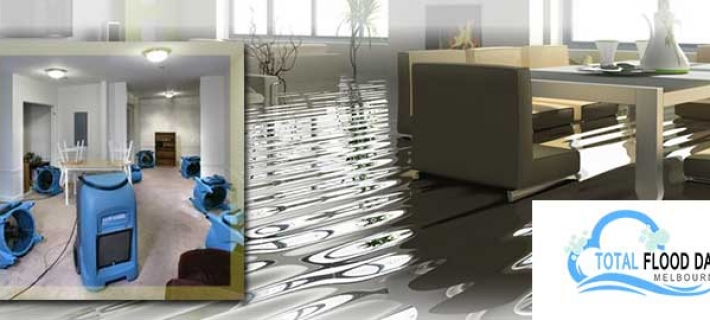 Get your Wet Carpets Cleaned and Dried Thoroughly with Professional Wet Carpet Drying