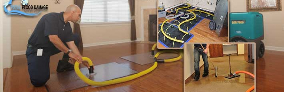 4 Top Additional Services Offered by Carpet Cleaning Companies