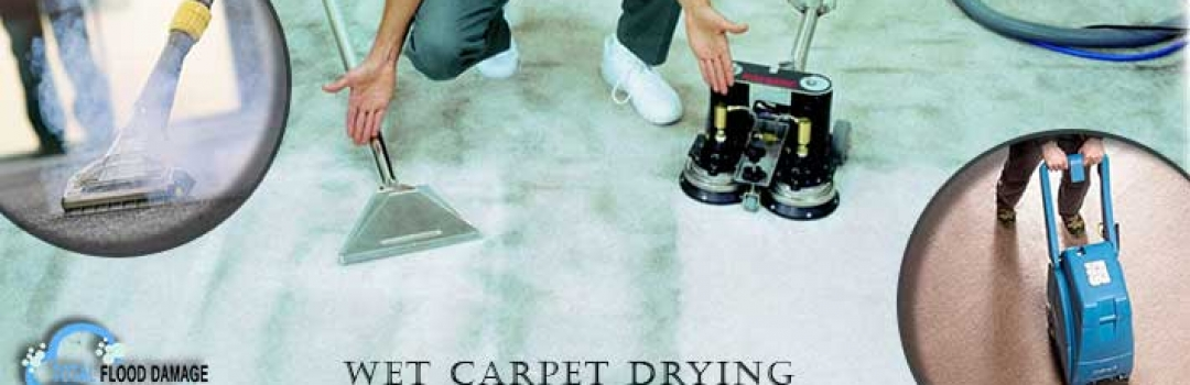 Avail Thorough Cleaning of Wet or Water Damaged Carpets with Professional Services