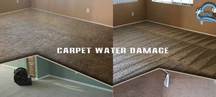 Steps to Dry the Wet Carpet after the Water Leak
