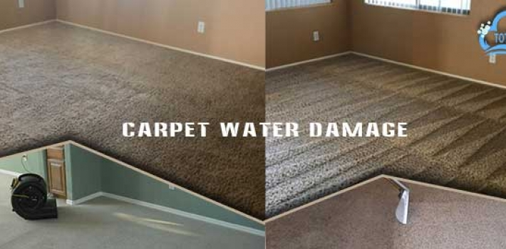 What is the Measure Steps Required for Preventing the Carpet From Flood Damage?