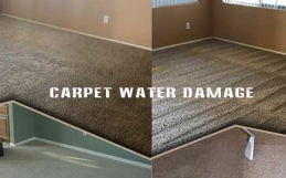 4 Reasons Why You Should Get Our Services For Damaged Carpets