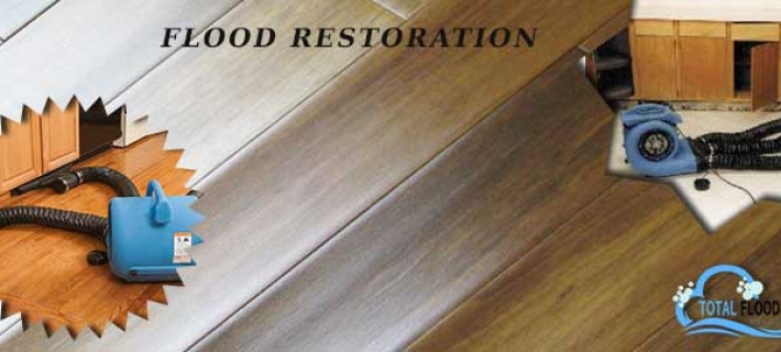 What Services You Can Avail From Flood Restoration Company?