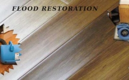 Getting Our Flood Restoration Service Made Simple