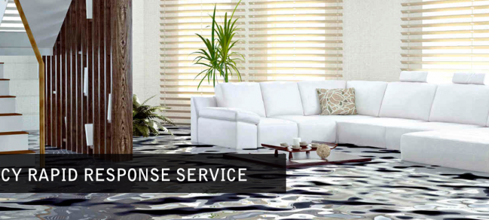 Is Conservation of Rug Important with Water Removal after Flooding?