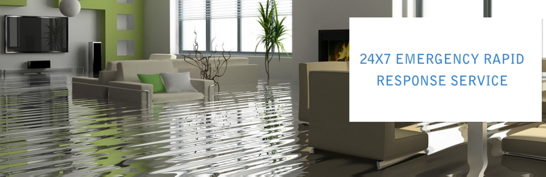 What You Should Know Prior To Picking Water Damages Healing Firm?