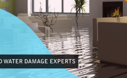 2 Do It Yourself Flooding Cleanup Mistakes and How to Avoid Them