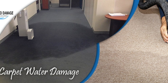 Dry Your Wet Carpets/Rugs with Carpet Cleaning Flood Damage Services