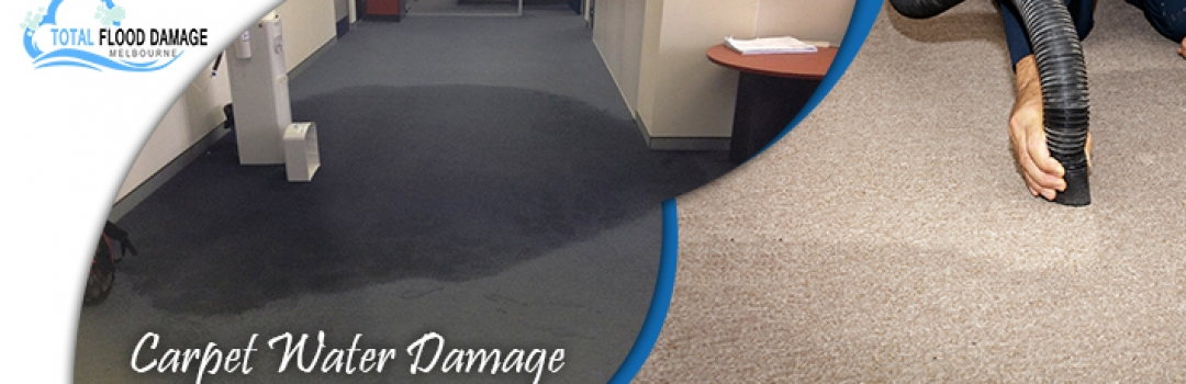 How to Deal with the Water Damaged Carpet?