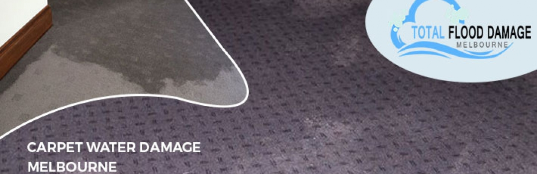 Which are the Various Ways to Take Care About the Carpet Water Damage?