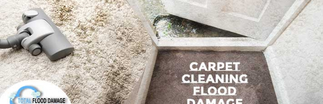 Get Ready For the Summer Party With Carpet Cleaning Procedure
