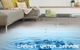 Have Carpet Water Damage? Use these Tips to Clean it