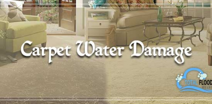 An Effective Trick To Handle Dry Carpets For The Home Or Office