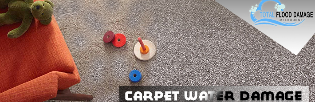 What are the Possible Ways to Reinstate Carpet From Damage?