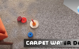 Carpet Water Damage Restoration – Hire Professional Before it Gets Late