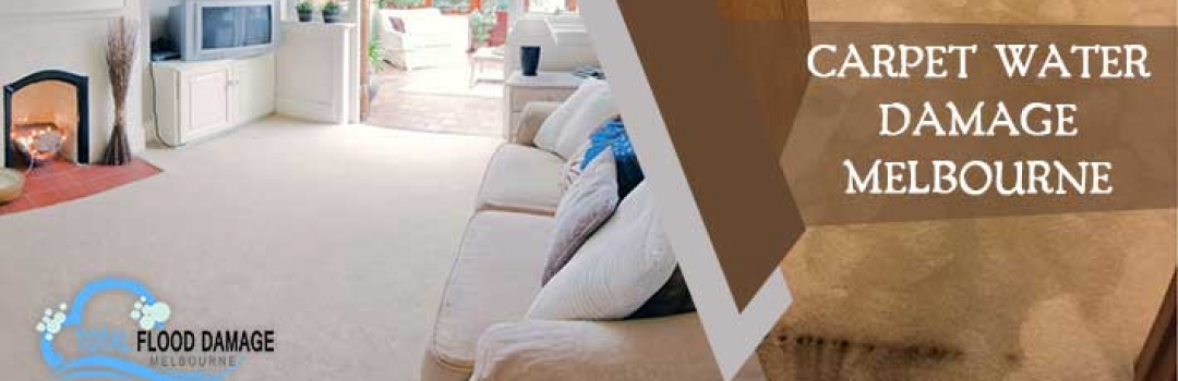 Which Things are Helpful to Use When You Have Carpet Water Damage?