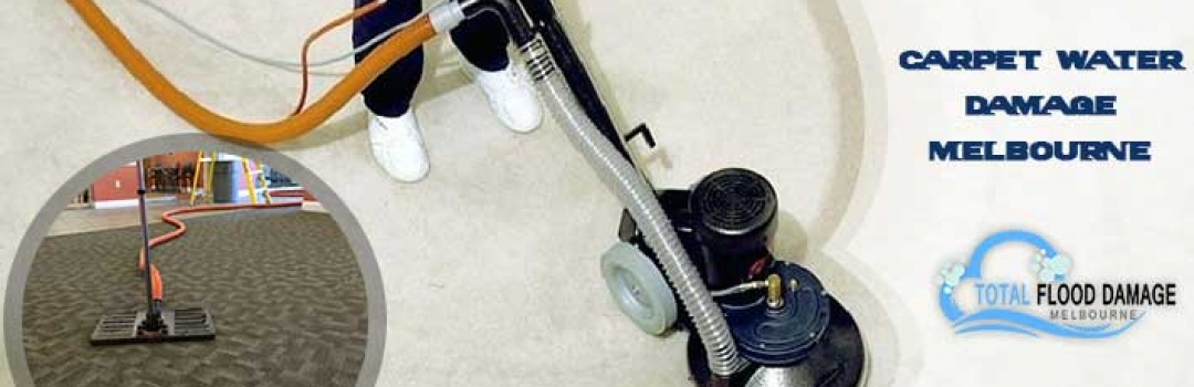 An professional useful guide to carpet water damage restoration service