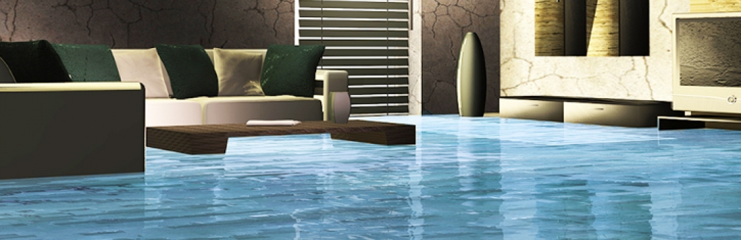 Deal with Water Damaged Carpet by Hiring Water Damage Restoration Services