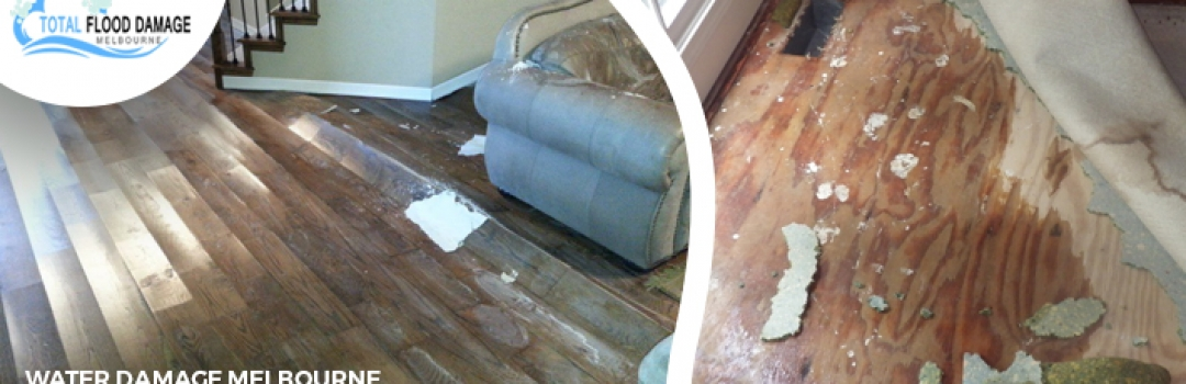 Importance and Benefits of Water Damage Restoration Company