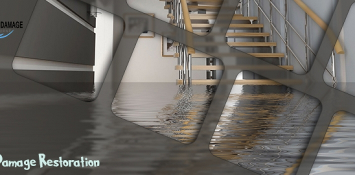 Protecting The Environment By Water Damage In Melbourne