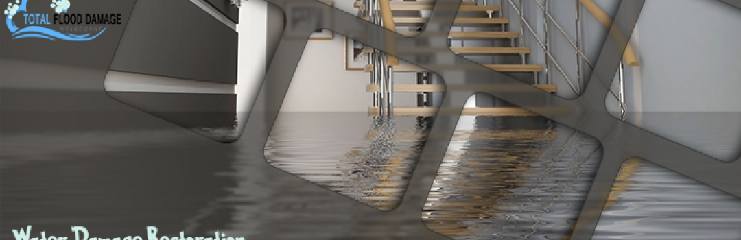 Determine Few Factors About Hiring The Right Water Damage Company