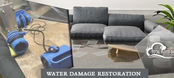 How To Come Out From The Flood Zone Situation? A Home Cleaning Guide!