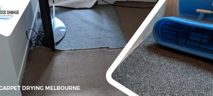 Why Should I Rely Upon Professional Wet Carpet Cleaners? An Ultimate Guide!