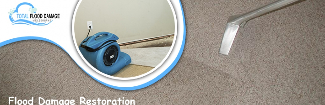 Need For Saving and Restoring Carpet Cleaning Flood Damage Melbourne