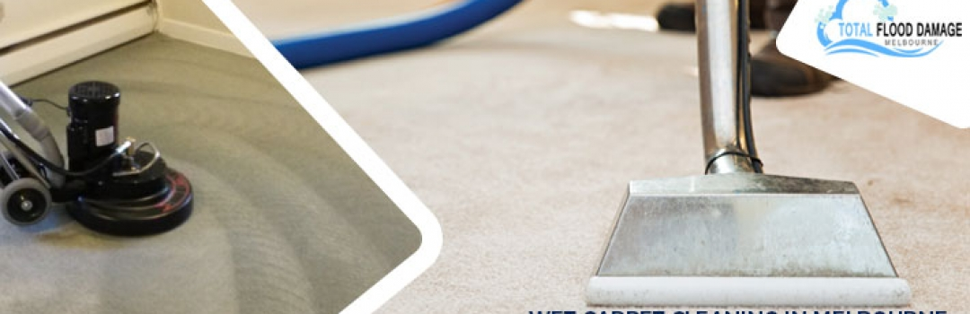 A Complete Guide on Professional Carpet Cleaning Company and How Does it Work?